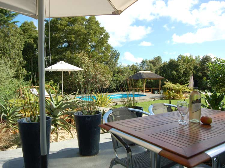 The patio (with braai facilities) overlooks the garden and pool