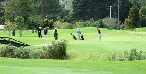 plett-golf